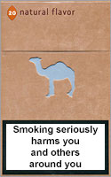 Camel Natural Flavor 8 Cigarettes pack